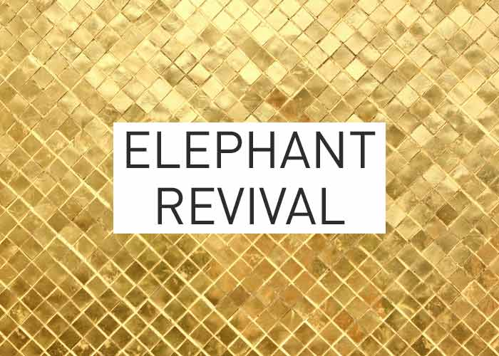 Local Gold: Elephant Revival